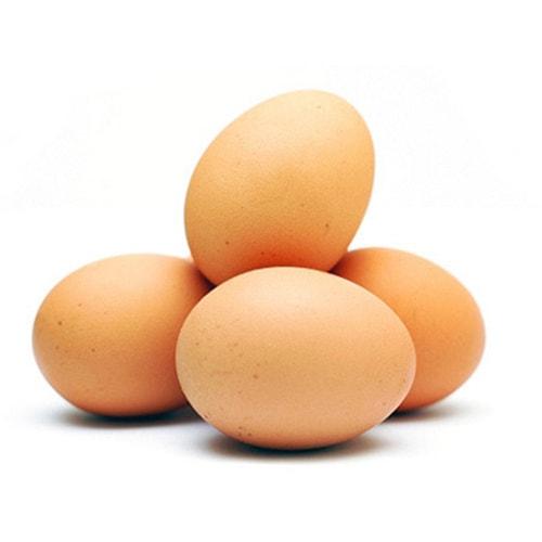Daily Egg